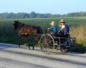 amish-drive-by-253619-m copy