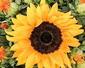 sunflower-bouquet-1430432-m copy